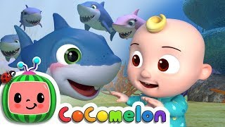 Baby Shark Song Music Track (Instrumental) - Nursery Rhymes & Kids Songs - Cocomelon (ABCkidTV)