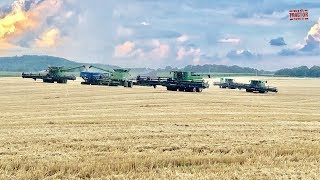 5 John Deere S790 Combines Race The Rain in Wheat Harvest 19