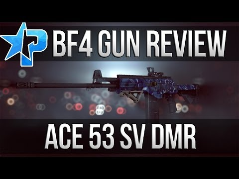 Battlefield 4 Gun Review