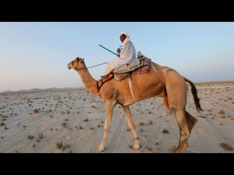 Desert Safari and Dune Bashing in Qatar: Party Builders Bonus Material