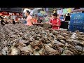 Taiwanese Seafood Tour - Rainbow Crabs Cooked Two Ways | OUTRAGEOUS Street Food in Taiwan