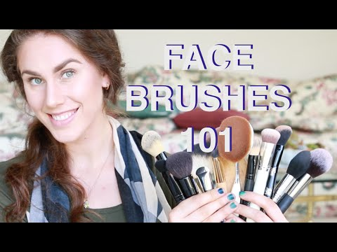 Face Brushes 101! EVERYTHING YOU NEED TO KNOW   Cassandra Bankson