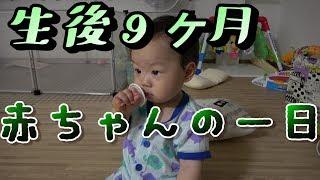 生後9ヶ月の赤ちゃんの一日の風景【がっちゃんくらぶ】One day with a baby.
