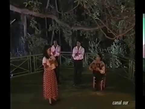 AURORA VARGAS-QUIQUE PAREDES-BULERÍAS.mp4