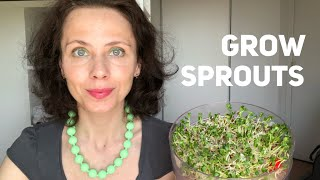 How to grow sprouts at home with Biosnacky