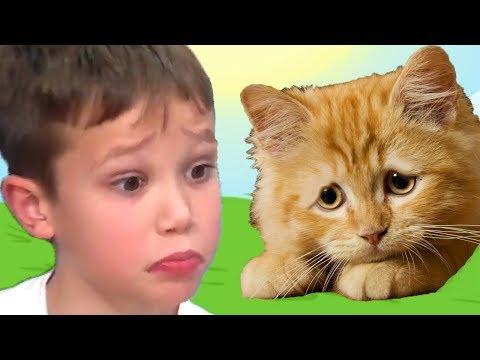 КРАСНЫЙ ШАР МИСТЕР МАКС спасает кошечку Мурку, мультик игра Детский летсплей #42