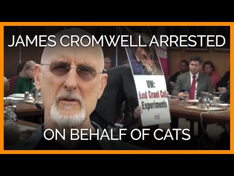James Cromwell Arrested Protesting UW Cat Experiments