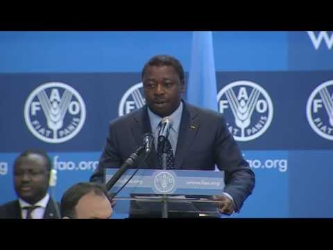 FAO recognizes Republic of Togo  for progress in fight against hunger (En/Fr)