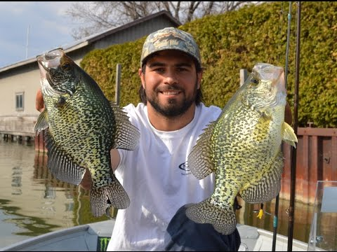Spring Crappie Fishing Under Docks