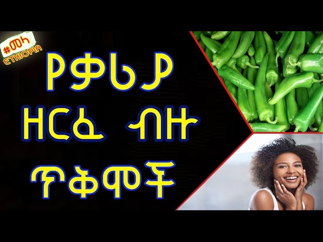 Ethiopia - Diffrent Benefites of Green Chili For your Health |