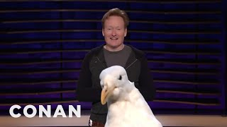Scraps: The Seagull