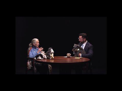Australian Standfirst Infinity Black Series: Dr Jane Goodall & Stirling Larkin