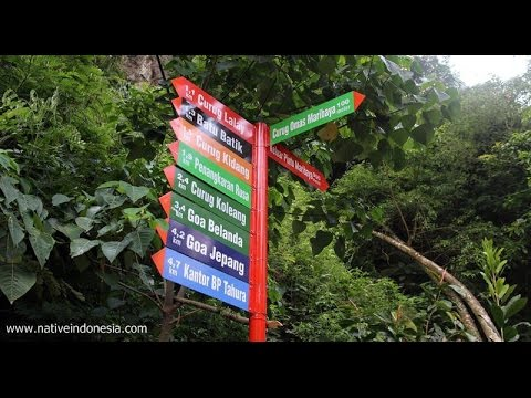 Youtube wisata bandung hutan