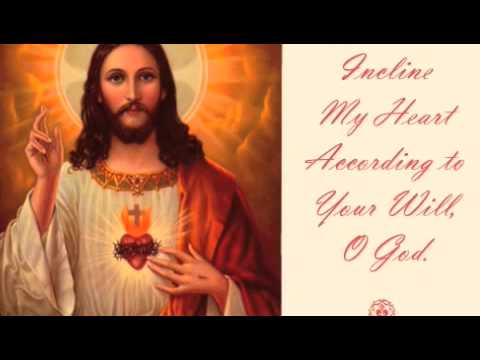 Dr. Scott Hahn Catholic Teaching Part 1/6 Video