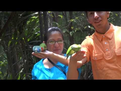 Aviario el Nido (Ixtapaluca Estado de Mexico)