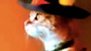 Thumb El Gato con botas parado en 2 patas, con el Gato Zorro y el Gato Mariachi