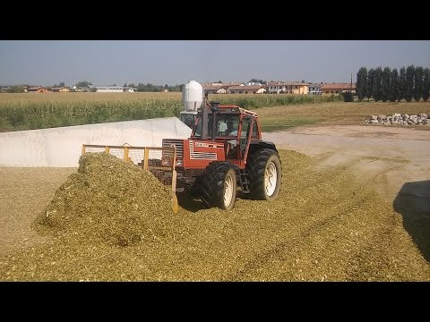 Pestamento Insilato 2016 - Az. Agr. Bertini - FIATAGRI 180-90 + JD 6830 + Lamborghini