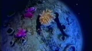 Алена Свиридова - Лунный свет
