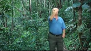 Neej Neeg - Ua Zoo Tau Zoo - Ua Phem Tau Phem - NpisVaj