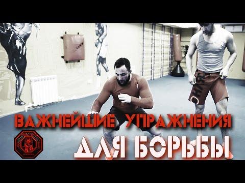 Важнейшие Упражнения Для Борьбы [Pride Team]