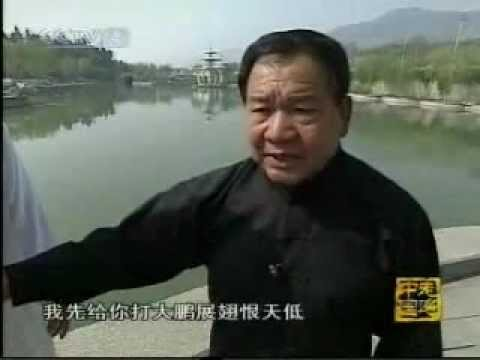 Shandong JiuGong BaGua Accupoint Striking System Documentary Image 1