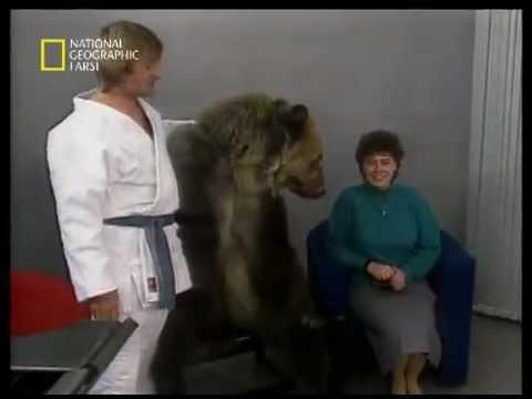 حمله وحشیانه خرس به یک خانوم در برنامه تلویزیونی Music Videos