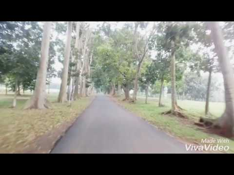download lagu Lagu Terbaru Dewi Persik - SURGA DUNIA gratis