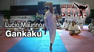 Lucio Maurino teaching Kata Gankaku - Karate All Stars 2013
