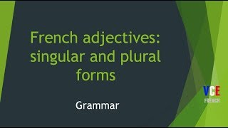French adjectives singular and plural