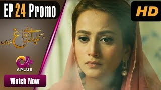 Drama | Is Chand Pe Dagh Nahin - Episode 24 Promo | Aplus ᴴᴰ Dramas | Zarnish Khan, Firdous Jamal