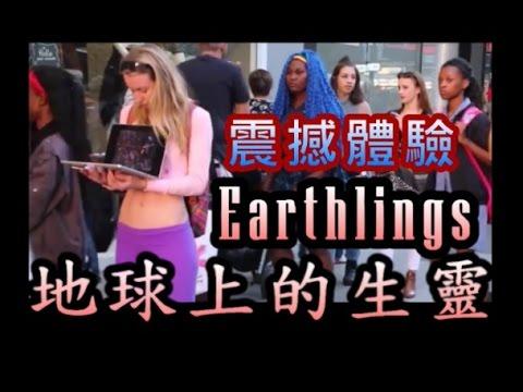 記錄片《地球上的生靈 | 地球上的生靈》街頭震撼體驗 Earthlings | We All Bleed the Same Color