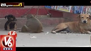 Funny Monkey And Dog Talk - V6 Jajjanakare Janaare