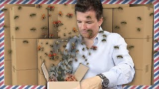 SOMEONE SENT ME BUGS IN THE MAIL [Fan Mail Unboxing] | Butch Hartman