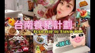 【Tainan Travel Vlog】+3KG養豬計劃 台南美食之旅 新春吃貨特輯✦ 炸雞洋行/布萊恩紅茶/丹丹漢堡/泰成水果店/赤鬼牛排