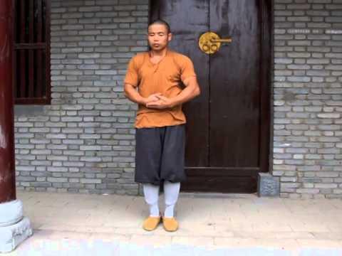 Shaolin Tai Chi: Rou Quan