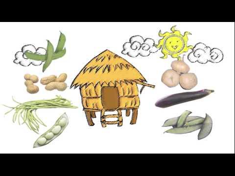 Bahay Kubo Recipe Bahay Kubo Filipino