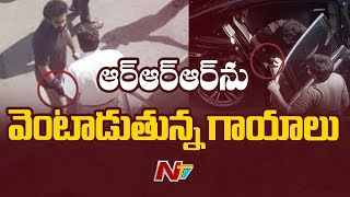 After Ram Charan, Jr NTR gets injured on the sets of RRR ? | Box Office | NTV