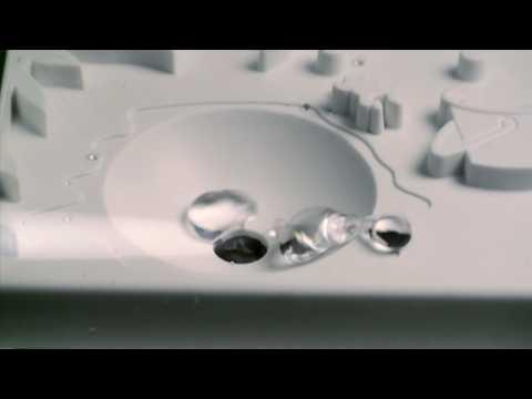 Nano-Tech Japanese Aqua Dance from ThinkGeek