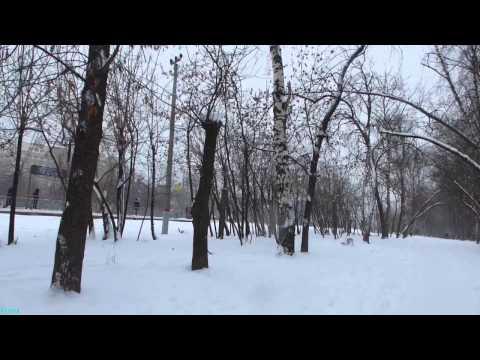 Погода в москве 11 января 2015 много