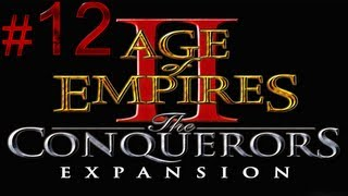 Age of Empires 2 The Conquerors - El Cid - Brother Against Brother