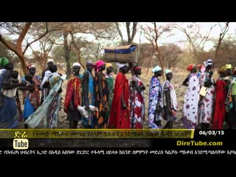 DireTube News - South Sudan says UN sanctions will harm peace process
