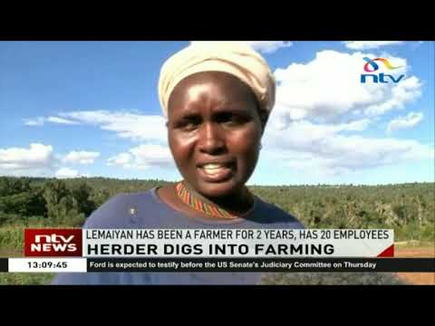 Samburu herder goes against culture and invests in farming