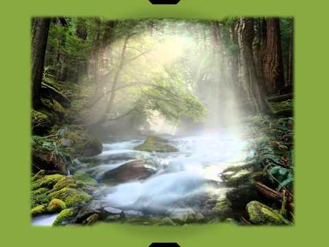 Heart Meditation.wmv