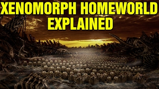 ALIEN: XENOMORPH HOMEWORLD EXPLAINED PROTEUS A6 454