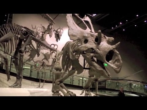 Awesome New Science Museum in Utah | Rio Tinto | Dinosaurs Minerals Natural History Video