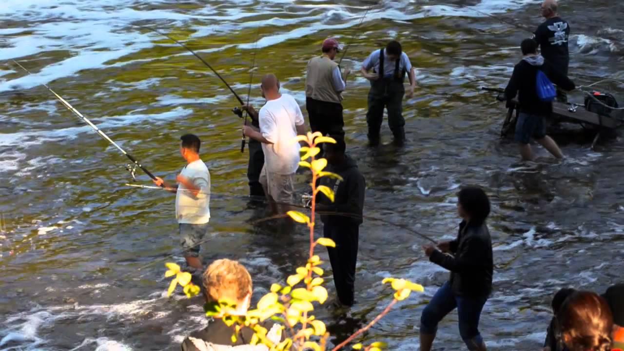 Fishing milwaukee river kletzsch park youtube for Milwaukee harbor fishing report