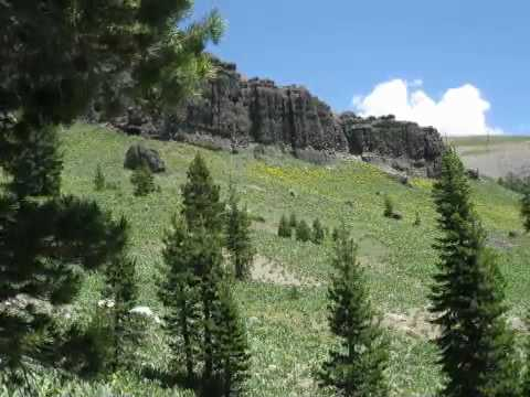 Hiking through Wild Flowers in the Sierra Nevada Mountains