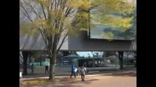 作新学院大学_キャンパス風景