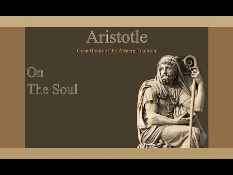 a discussion on human function in ethics by aristotle