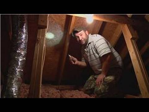 Pest Control How To Remove Bees From The Attic Youtube